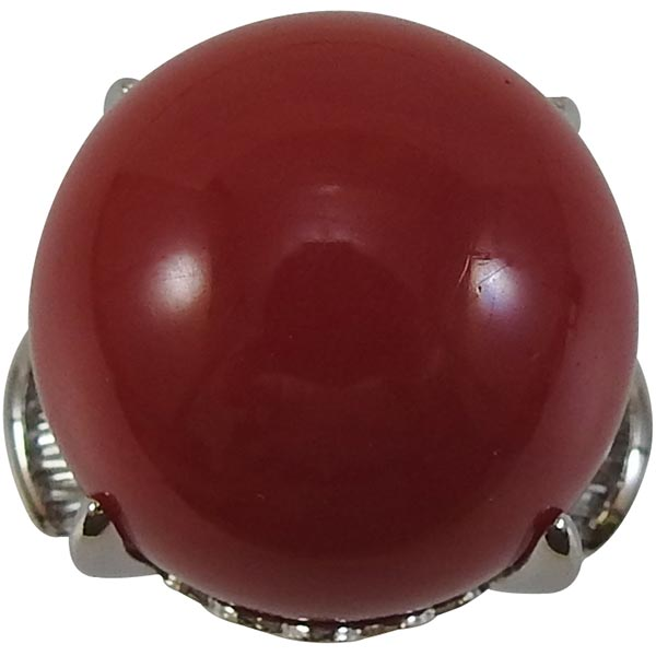 Pt900 サンゴリング